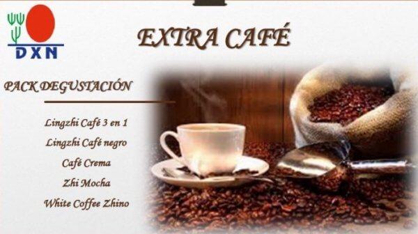 dxn-extra-coffee-degustacion